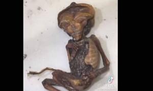 Investigan el hallazgo de restos humanos en el antiguo hospital de La Línea