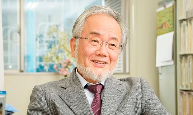 Japón y la autofagia privan a España de su tercer Nobel de Medicina