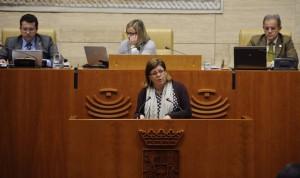 La Asamblea aprueba por unanimidad impulsar la atención al cáncer