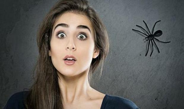 La clave para superar una fobia sin sufrir está en el contacto fugaz