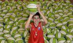 La competición Igualatorio Cantabria de minibasket ya tiene balón oficial