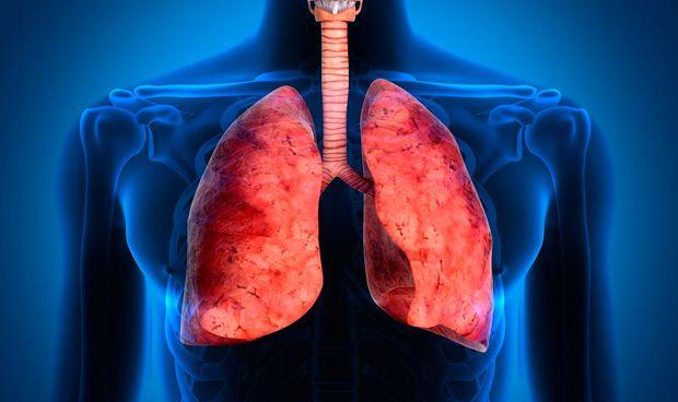 La comunicación de tumores pulmonares y huesos contribuye a su progresión