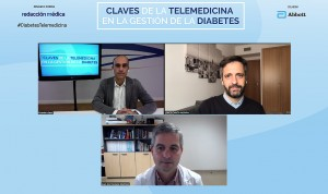 """La diabetes, """"paradigma ideal"""" de patología para aplicar la telemedicina"""