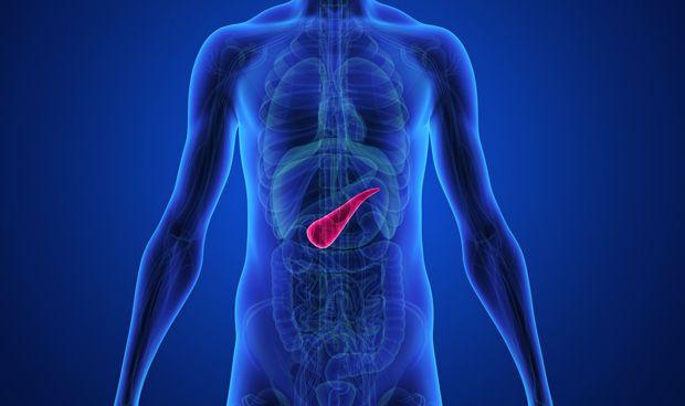 La duplicación de genes en el cáncer de páncreas potencia su agresividad