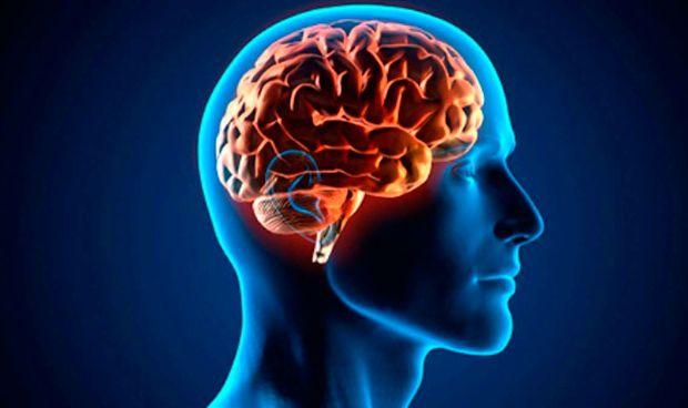 La epilepsia est� relacionada con las diferencias de grosor del cerebro