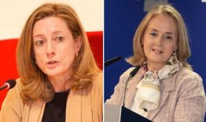 La evaluación común de tecnología sanitaria se aprobará tras las europeas