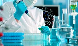 La grasa favorece la metástasis al impulsar la creación de vasos linfáticos