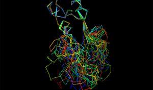 La hormona de la insulina protege al cerebro frente el alzhéimer
