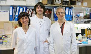 La inhibición de una proteína ralentiza la metástasis del cáncer de ovario