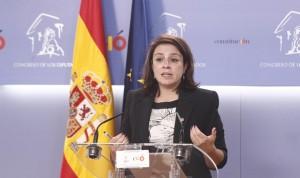 La ley de eutanasia será la primera que tramite el PSOE en el Congreso