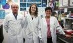 La lisil oxidasa, nueva fuente de estrés oxidativo vinculada a hipertensión
