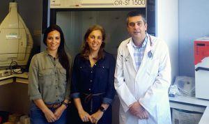 La microbiota intestinal juega un papel clave en el desarrollo de diabetes