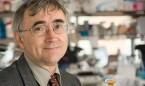 La mutación del gen TP53, clave en el manejo de la leucemia