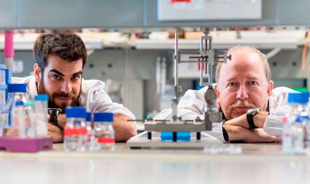 La oxidación ayuda a regenerar las neuronas dañadas tras una lesión medular