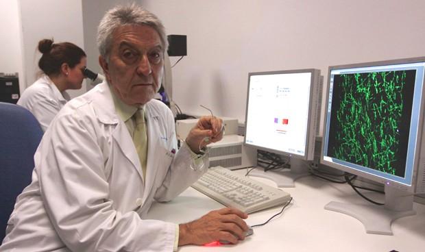 La Paz estudia tratar la esclerosis múltiple con vesículas extracelulares
