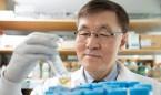 La reprogramación de células abre la puerta al tratamiento del párkinson