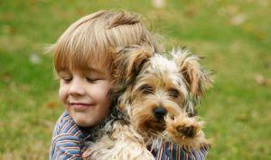 La terapia con perros puede ayudar a reducir los síntomas de niños con TDAH