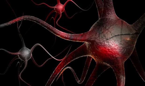 La terapia génica muestra su potencial en alzhéimer