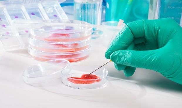 Europa renueva su legislación de productos 'in vitro' de 1990
