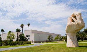 La Universidad de Alicante aprueba su plan de estudios en Medicina