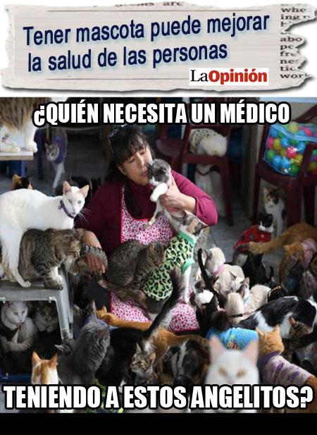 ¿Hacia la animaloterapia?