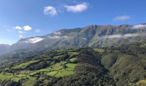 Estas son las tres claves de Asturias para contener el Covid-19