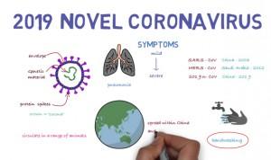La OMS lanza un curso gratuito online de 3 horas para formar en coronavirus