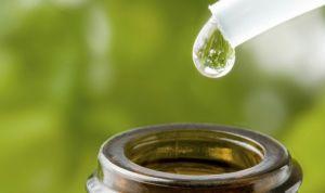 Las horas más bajas de la homeopatía