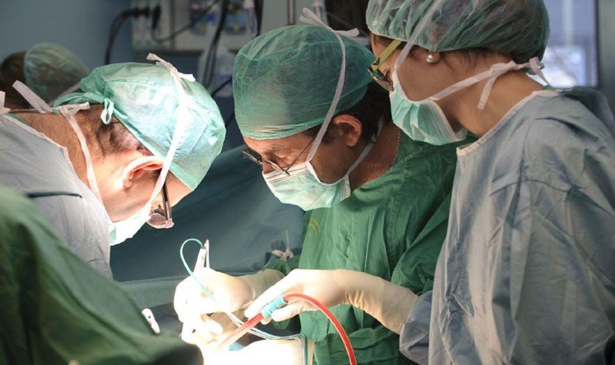 Tras los pasos del líder en trasplantes: ¿qué países 'copian' a España?