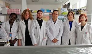 Las células madre cancerígenas causan la metástasis pero no el tumor