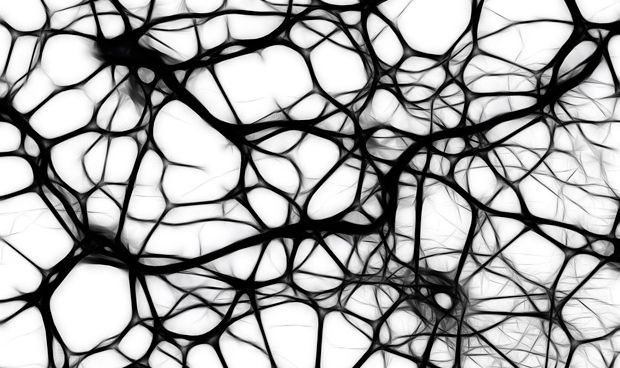 Las convulsiones epilépticas derivan de un patrón secuencial y no del azar