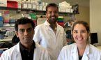 Las estatinas son eficaces en las fases más avanzadas de la cirrosis