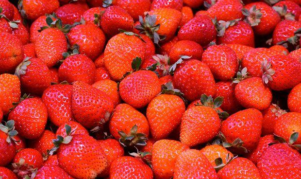 Las fresas combaten el cáncer de mama en ratones