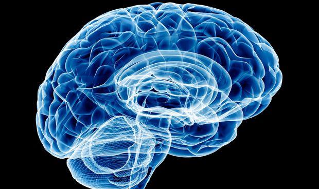 Las lesiones cerebrales, ligadas a la demencia a�os despu�s de que ocurran