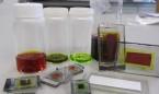Las nanopartículas son las nuevas aliadas de los trasplantes de órganos