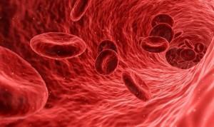 Las plaquetas desencadenan eventos que dañan órganos tras hacer cirugías