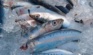 Los ácidos omega 3 no refuerzan la salud cardiovascular