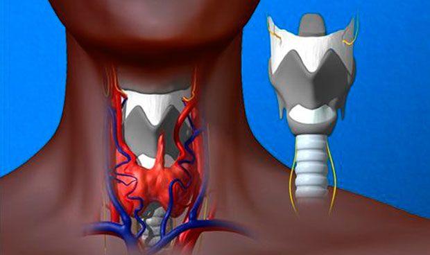 Los ingenieros premian un proyecto que mejora la voz de operados de laringe
