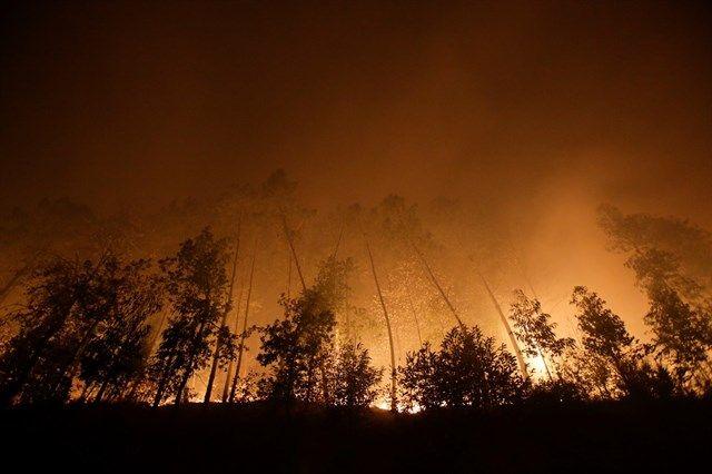 Los políticos sanitarios, consternados por los incendios en Galicia