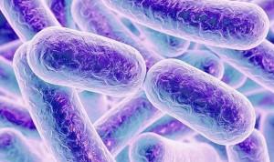 Los primeros 1.000 días de vida son clave para el microbioma del bebé