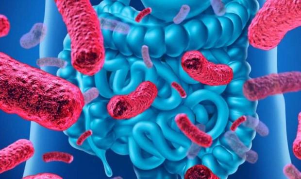 La microbiota intestinal y la vitamina C 'predicen' la gravedad del Covid