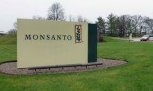 Monsanto, la 'joya de la corona' de Bayer, no sale del ojo del huracán