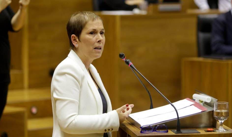 Navarra legisla para que las ONG presten servicios sanitarios