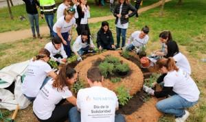 """Novartis celebra su Día de la Solidaridad, """"una jornada llena de ilusión"""""""