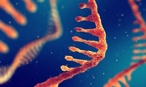 Nuevo potencial marcador para el cáncer de piel