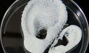 Nuevos sistemas de bioimpresión 3D regeneran cartílagos y huesos