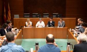 Olvido Moratinos, portavoz sanitaria del PSOE en las Cortes de Aragón