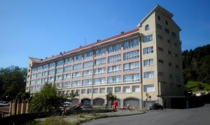 Osakidetza busca un jefe de Servicio de Medicina Interna para Santa Marina
