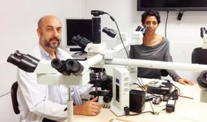 Pedro Luis Fernández, Catedrático de Universidad en Anatomía Patológica