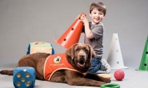 Premian al Hospital de Torrejón por terapias con animales en niños con TDAH